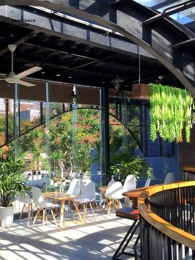 Start an indoor garden