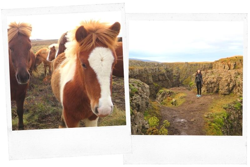 Discovering a hidden canyon in Iceland where locals were having a horse Dance Festival before winter